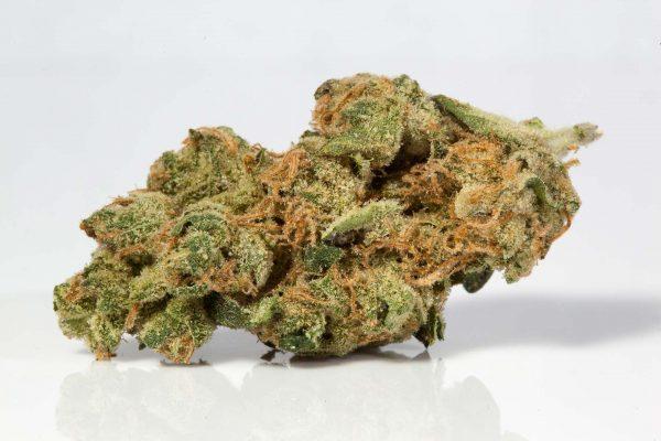 el muerte strain indica cannabis flower - Red Congolese Strain